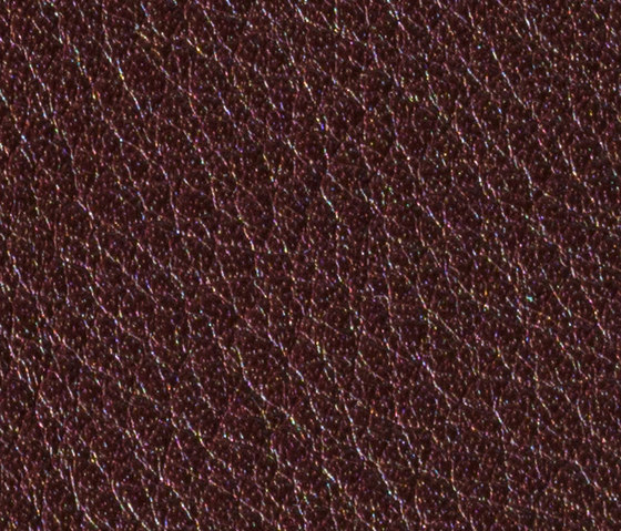Gusto Aubergine by Alphenberg Leather | Natural leather
