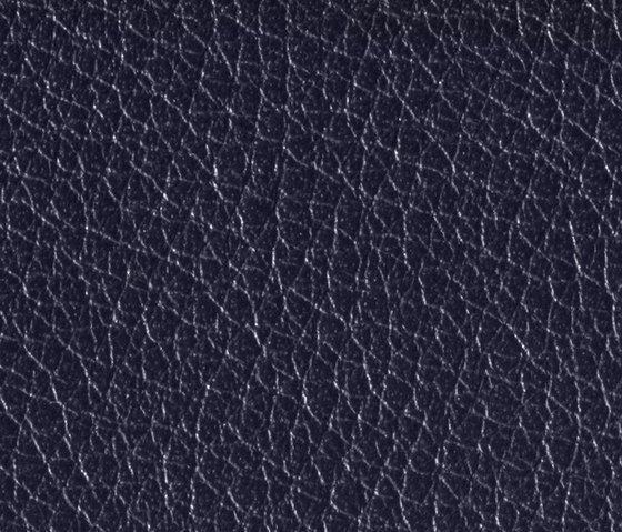 Gusto Nightblue by Alphenberg Leather | Natural leather