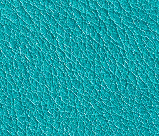 Gusto Turquoise by Alphenberg Leather | Natural leather