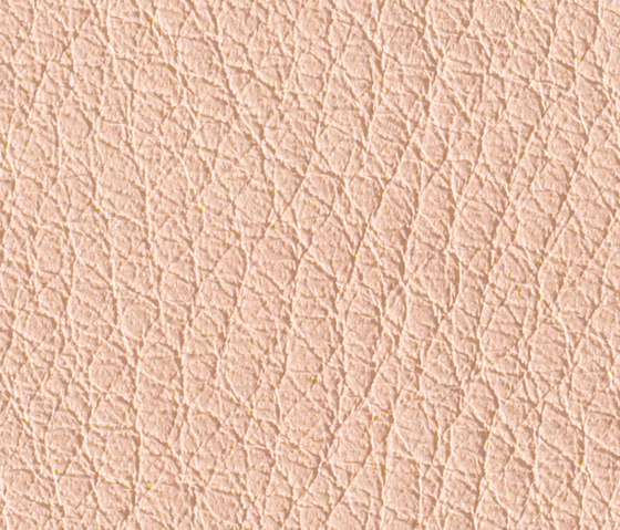 Gusto Blush by Alphenberg Leather   Natural leather