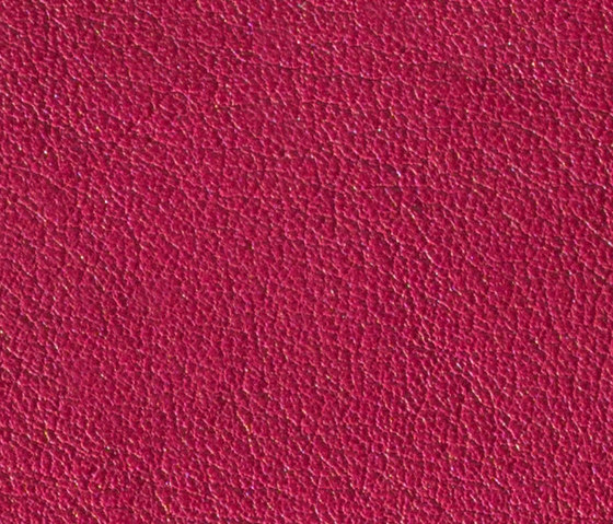 Gusto Fuchsia by Alphenberg Leather | Natural leather