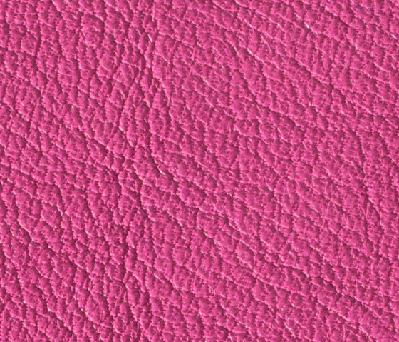 Gusto Pink by Alphenberg Leather | Natural leather