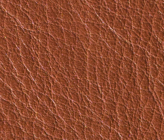 Gusto Cognac by Alphenberg Leather   Natural leather
