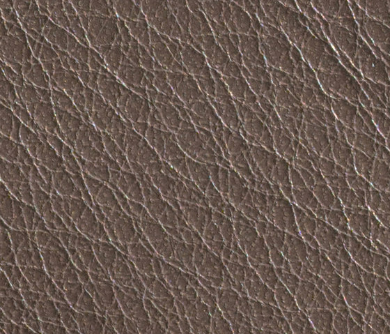 Gusto Grey by Alphenberg Leather | Natural leather