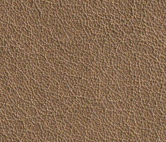 Gusto Taupe by Alphenberg Leather | Natural leather