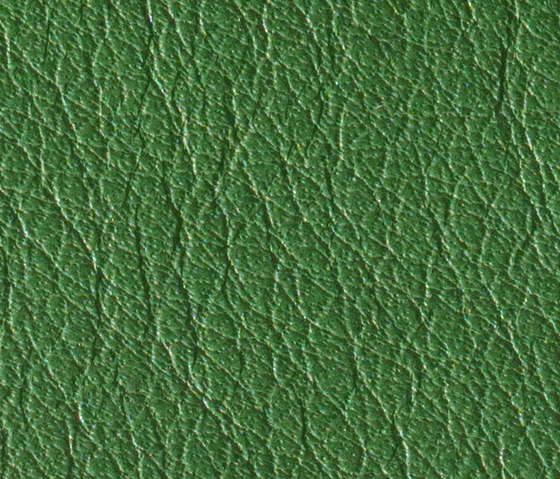 Gusto Darkgreen by Alphenberg Leather | Natural leather