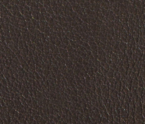 Gusto T. Dimoro by Alphenberg Leather | Natural leather