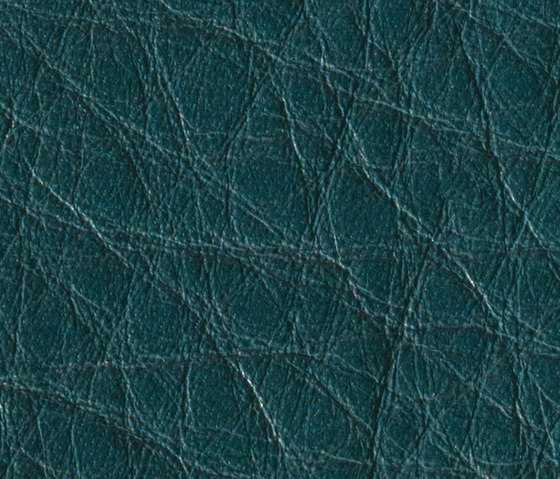 Gusto Petrol by Alphenberg Leather | Natural leather