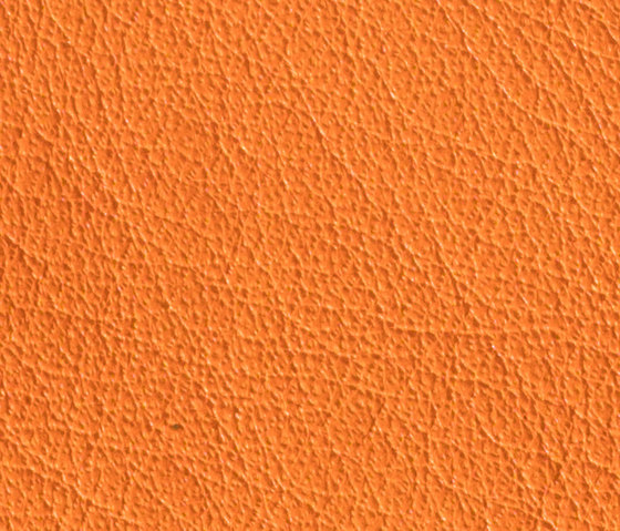 Gusto Orange by Alphenberg Leather | Natural leather