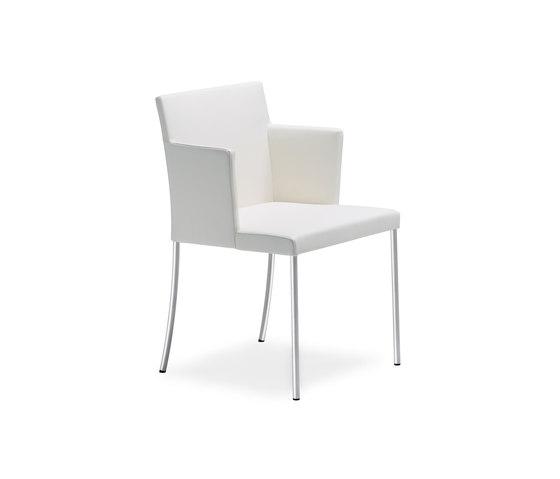 Jason Lite 1900 Armlehnstuhl von Walter K. | Stühle