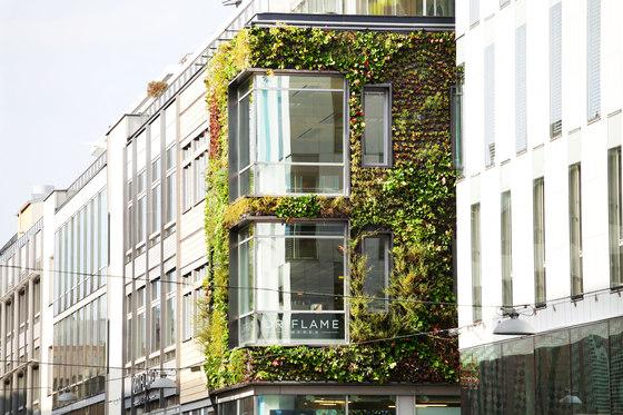 Outdoor Vertical Garden | Klara Zenit von Greenworks | Fassadenbegrünung