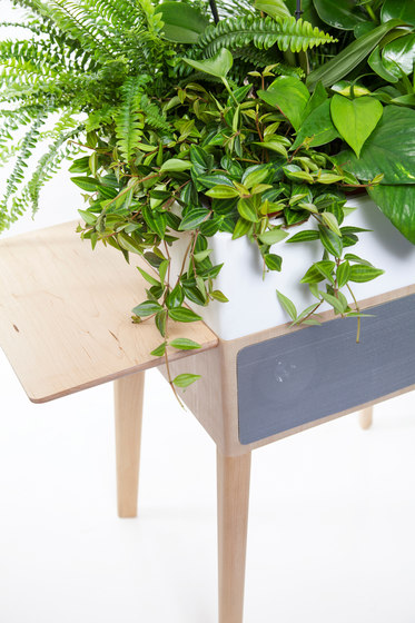 Bloombox by Greenworks | Plant pots