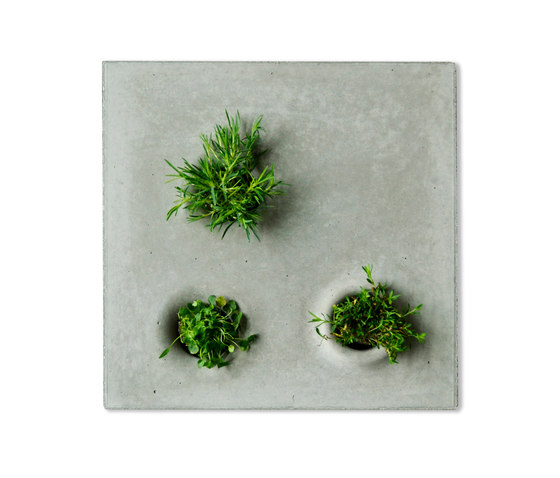 Green To Grey by Greenworks | Plant pots