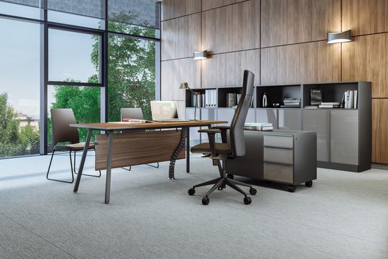 Vu Executive office desk de Ergolain | Escritorios