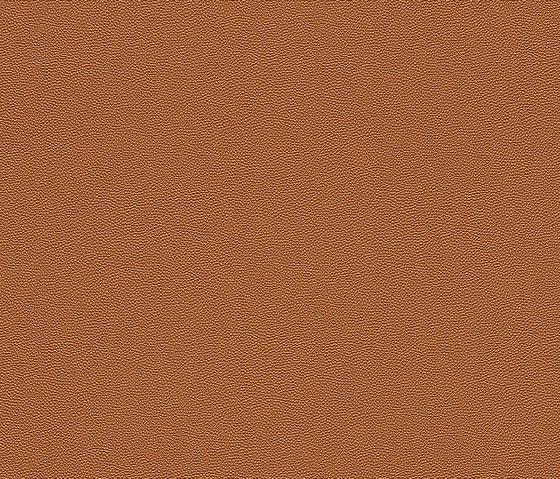 Cosmopolitan 576009 di Rasch Contract | Tessuti decorative