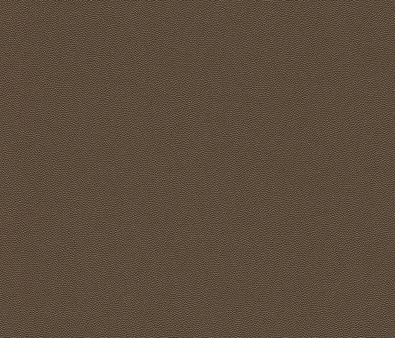 Cosmopolitan 576016 di Rasch Contract | Tessuti decorative