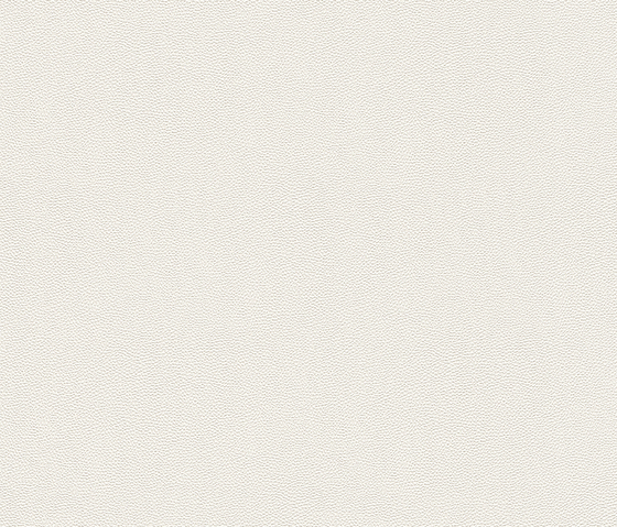 Cosmopolitan 576061 di Rasch Contract   Tessuti decorative