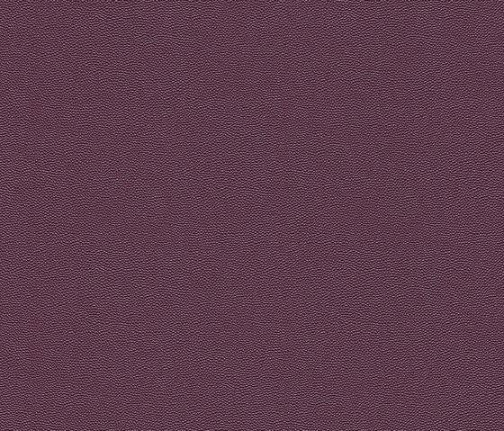 Cosmopolitan 576085 di Rasch Contract | Tessuti decorative