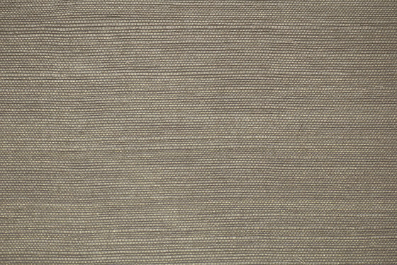 Vista 5 070292 by Rasch Contract | Drapery fabrics