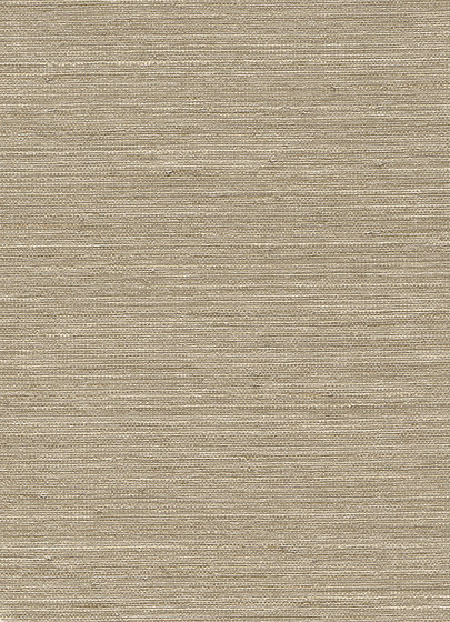 Vista 5 213880 by Rasch Contract | Drapery fabrics