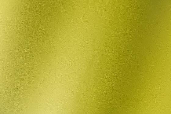 Amalfi limone 019522 di AKV International   Finta pelle