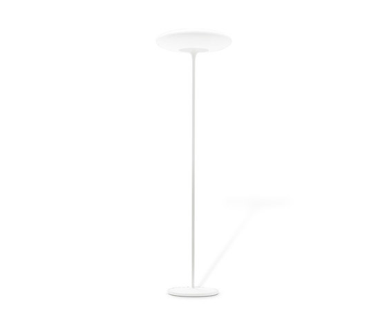 Squash_FL von Linea Light Group | Allgemeinbeleuchtung