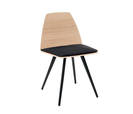 Sila Chair Cone Shaped de Discipline | Sillas