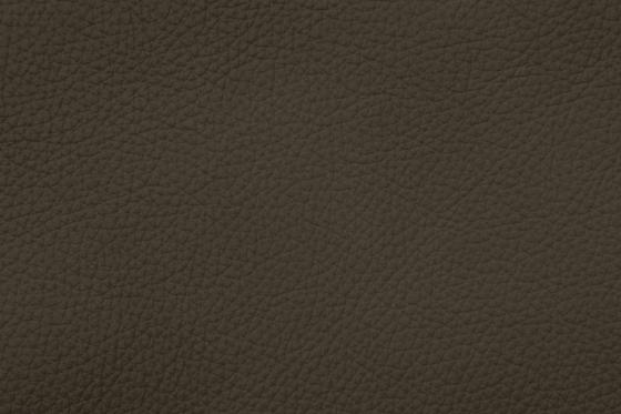 Xtreme 79173 Sumatra by BOXMARK Leather GmbH & Co KG | Natural leather