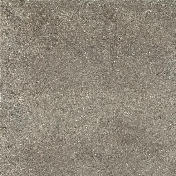 Limewalk Greige by ASCOT CERAMICHE | Ceramic tiles