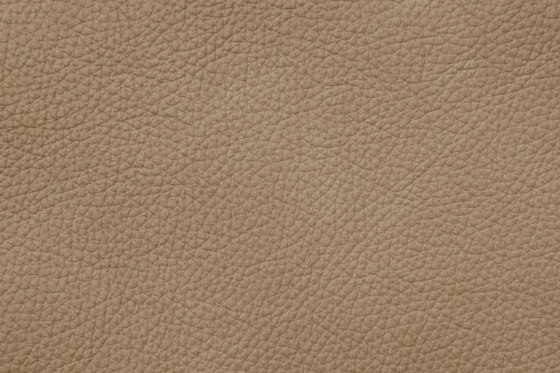 Mondial C 18011 Linen by BOXMARK Leather GmbH & Co KG | Natural leather
