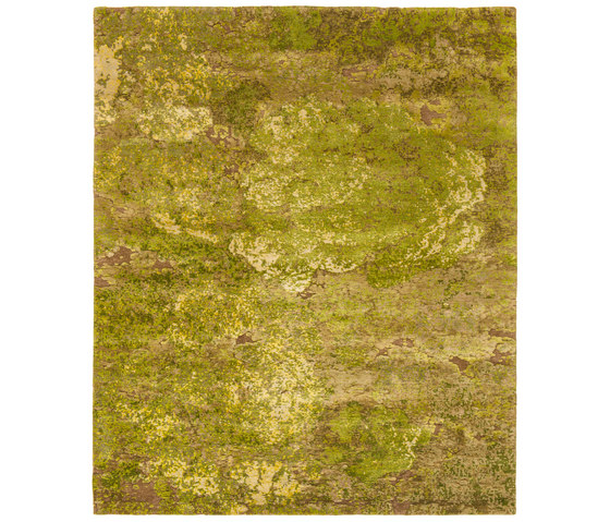 Jungle | Aerial Forest by Jan Kath | Rugs