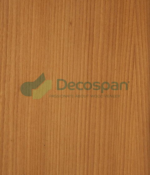 Decospan Elm Grey by Decospan   Wall veneers