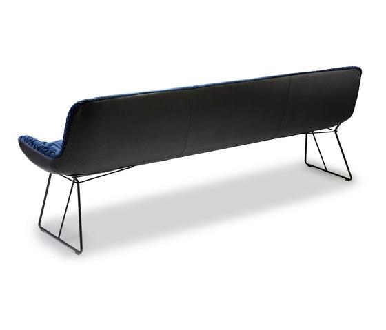 Leya   Bench von Freifrau Sitzmöbelmanufaktur   Sitzbänke