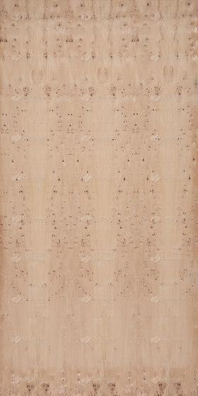 Decospan Yew von Decospan | Wand Furniere