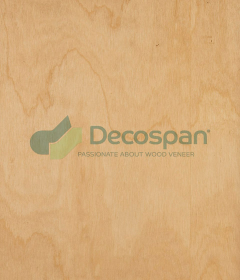 Decospan Birch Ice von Decospan | Wand Furniere