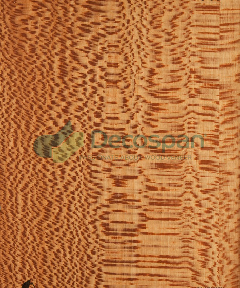 Decospan Lacewood by Decospan | Wall veneers