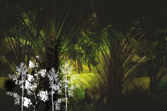 Frames Palms de GLAMORA | A medida