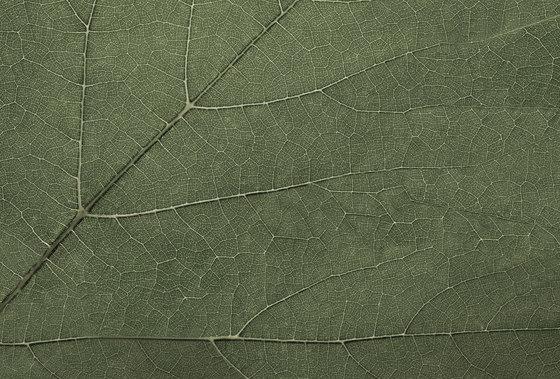 Essence Four Seasons di GLAMORA | Rivestimenti su misura