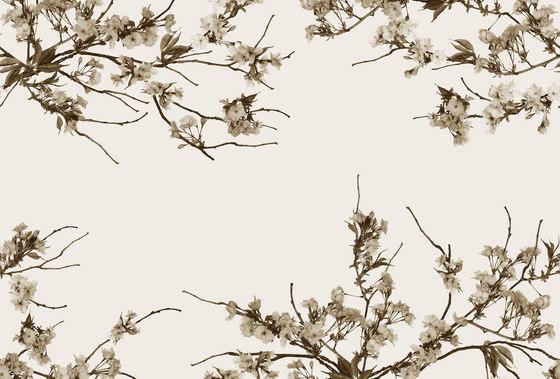 Essence Korean Blossom di GLAMORA | Rivestimenti su misura