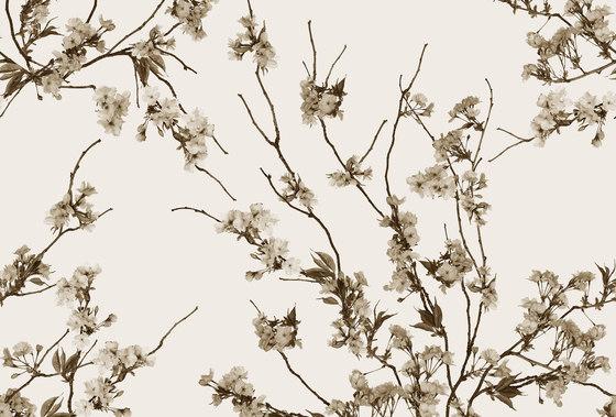 Essence Korean Blossom de GLAMORA | A medida