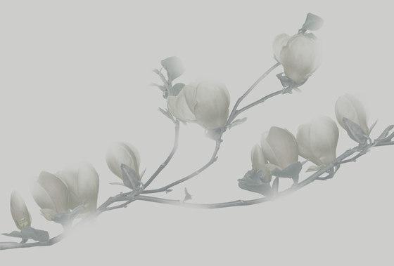 Essence Soulange von GLAMORA | Wandbeläge