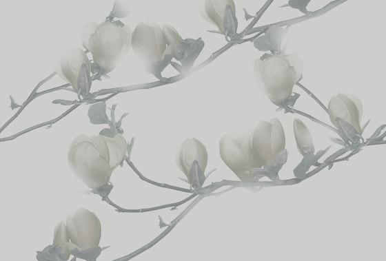 Essence Soulange di GLAMORA | Rivestimenti su misura
