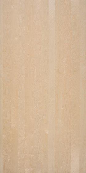 Nordus Snow Birch di Decospan | Piallacci pareti