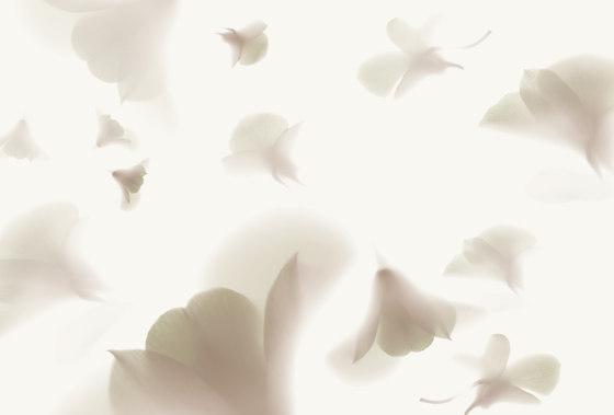 Visions Pink Rhapsody von GLAMORA | Massanfertigungen
