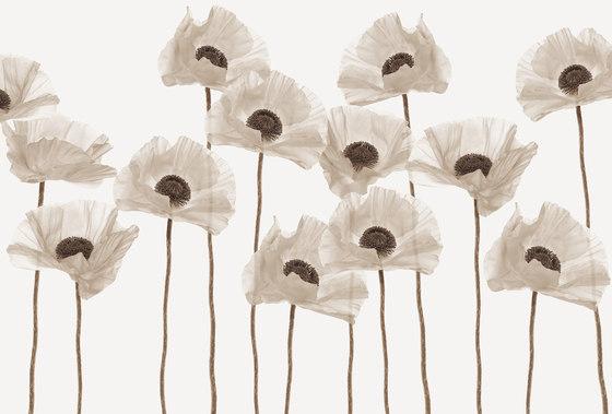 Visions Poppysicle von GLAMORA | Wandbeläge