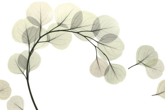 Visions Light Breeze de GLAMORA | Revestimientos de pared