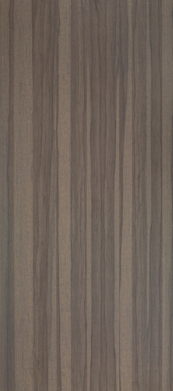 Shinnoki Dusk Frake von Decospan | Wand Furniere