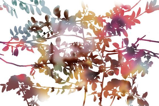 Ghost Garden de GLAMORA | A medida