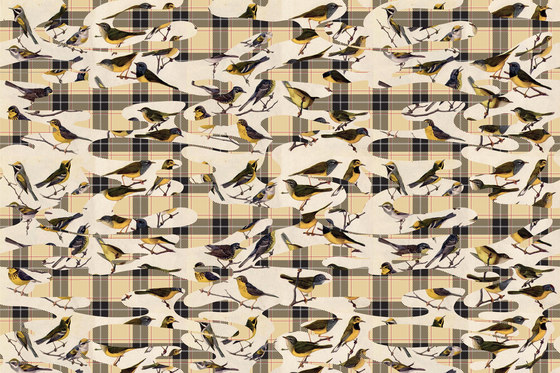 Camotartan Birds de GLAMORA | A medida