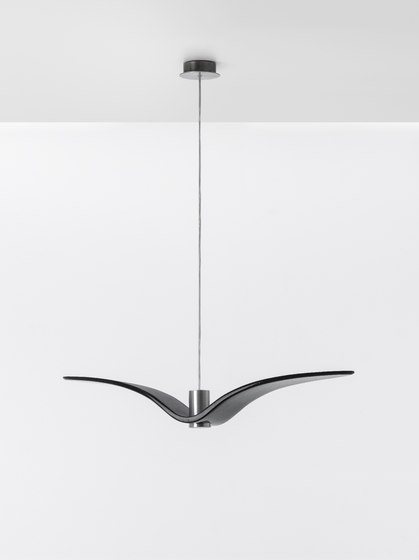 Night Birds PC962 de Brokis | Suspensions